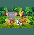 animal in the forest vector image