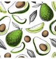 hand drawn green avocado seamless pattern vector image