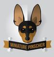 miniature pinscher vector image vector image