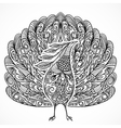 peacock vintage fantasy bird with ornament vector image vector image