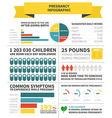 Pregnancy nutrition infographic vector image