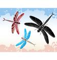 Set of dragonflies vector image vector image