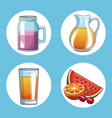 set of natural juice round icons vector image vector image