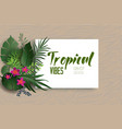 tropical nature poster vector image