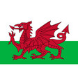 wales flag red dragon on white and green vector image vector image