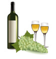 a wine bottle and grapes vector image