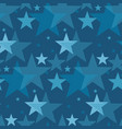 abstract geometry night star motif vector image vector image