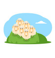 cartoon sheep flock vector image vector image