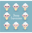 cute sheep collection vector image