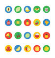 Fruit and Vegetable Icons 2 vector image