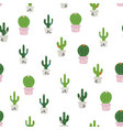 pattern with colorful cactus vector image vector image