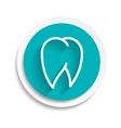 Tooth Icon white dental vector image vector image