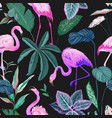 tropical background with flamingo and palm leaves vector image vector image