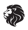 wild lion icon logo template vector image