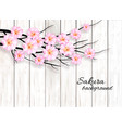abstract spring background with a pink blossoming vector image vector image