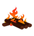 abtract nature campfire vector image