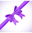 Big shiny purple bow and ribbon on white vector image vector image