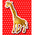 Cute giraffe on red background vector image