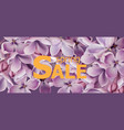 purple lilac flowers spring background vector image vector image