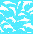 silhouettes of dolphins vector image