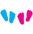 child feet silhouette vector image