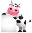 cow cartoon with blank sign vector image vector image