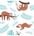 cute sloths hanging on tree vector image vector image