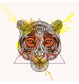 entangle stylized tiger face in triangle frame vector image vector image