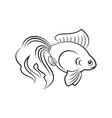 goldfish silhouette icon vector image