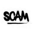 graffiti scam word sprayed in black over white vector image