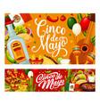 mexican guitar cactus food cinco de mayo party vector image vector image