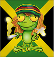 Rastafarian frog cartoon on jamaican flag vector image vector image