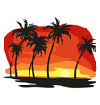 Sunet palms vector image