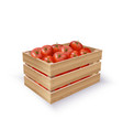 tomatoes in wooden crate vector image vector image