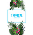 tropical nature isolated vector image