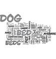 a look at discount dog beds text word cloud vector image vector image