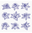 ballpoint pen drawing roses set vector image vector image