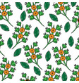 beauty flowers branch leaves decoration pattern vector image vector image