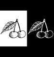 cherry with leaf black and white hand drawn vector image vector image