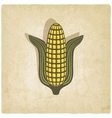 Corn symbol on old background vector image