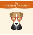 hipster character elements for nerd puppy dog vector image vector image