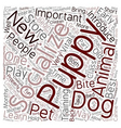 Learn The Methods Of How Your Puppy Can Socialize vector image vector image