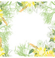 pattern with summer flowers and leaves on a white vector image