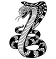 stylized cobra snake vector image vector image
