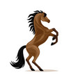 beautiful horse standing vector image