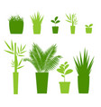 green silhouette or contour houseplant pot set vector image vector image