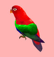 low poly colorful parrot bird on pink back ground vector image vector image
