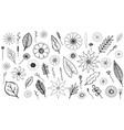 monochrome botanical set vector image vector image
