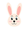 rabbit or bunny cute animal icon image vector image vector image