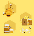 set of honey and bees vector image